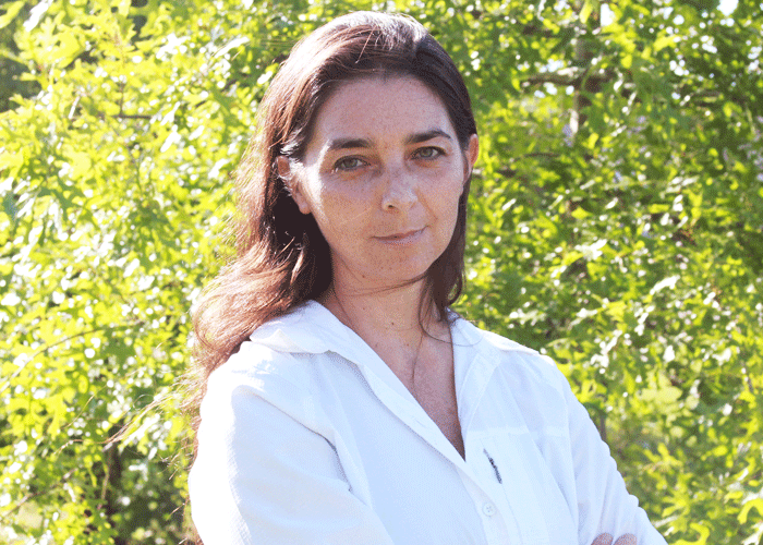 Prof. Mercedes Ardiles